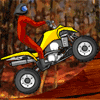 playing Quad Extreme Racer game